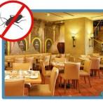 DDD in restaurante